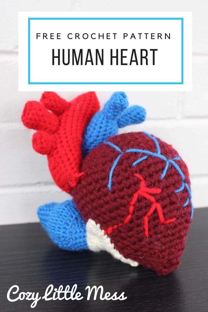 Crochet Pattern for a Human Heart