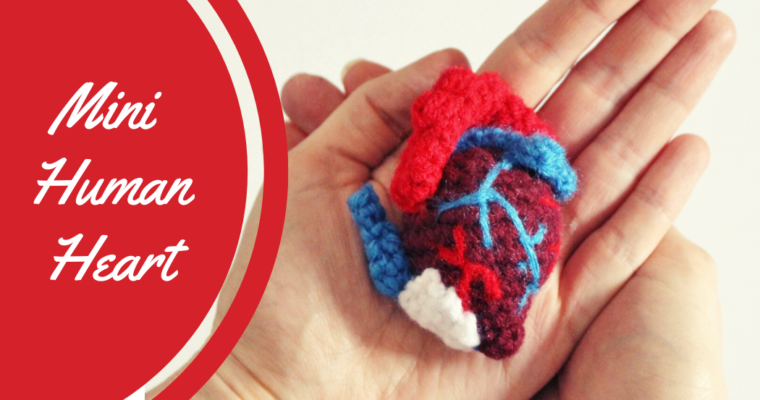 Free pattern Mini Human Heart